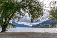 Lake wakatipu view in queenstown. Lake wakatipu view of willow tree from queenstown lakeside beach area. Queenstown is a small town in new zealand. Taken during royalty free stock images