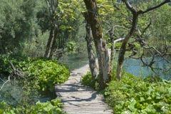 Lake and walk pathway Royalty Free Stock Image