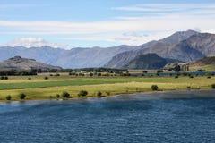 Lake Wanaka. Glendhu Bay of Lake Wanaka in New Zealand. Beautiful mountain landscape and green meadows dotted with white sheep Stock Images
