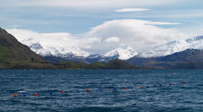Lake Wanaka Royalty Free Stock Photos