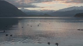 Lake Wanaka and Mt Aspiring in Autumn stock video footage