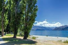 Lake Wanaka shoreline with green trees on a summer sunny day royalty free stock photos