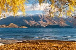 Lake wanaka Royalty Free Stock Photography