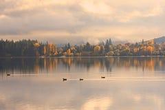 Lake Wanaka,South Island New Zealand. Royalty Free Stock Photos