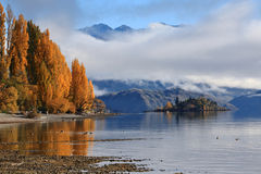 Lake Wanaka,South Island New Zealand. Stock Images
