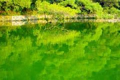 Lake water Stock Photo