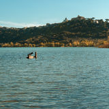 Lake Water and Nature, Castel Gandolfo, Duck on lake Royalty Free Stock Photos