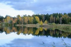 Lake with water reflections in colorful autumn day. With white clouds in blue sky Royalty Free Stock Photo
