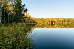 Lake with water reflections in colorful autumn day. With white clouds in blue sky Royalty Free Stock Images