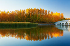 The lake water and small bridge autumn sunset Royalty Free Stock Photography