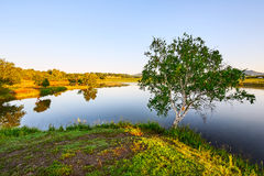 The lake water and tree. The photo was taken in Wulanbutong scenic spot of Hexigten national Geopark Chifeng city Nei Monggol Autonomous Region,China stock photography