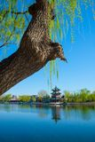 Lake Water, Willow Leaves, Archaic Attic. Houhai Wetland Park, Beijing, Asia, China, Antique Architecture Wang Hai Lou royalty free stock photography
