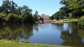 Lake with waterbirds in French chateau garden. Near Bordeaux stock images