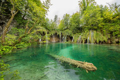 Lake and waterfall in Plitvice National Park, Croatia. Stock Photo