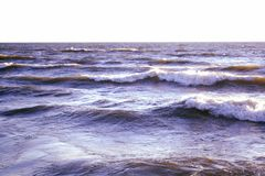 Lake wave Royalty Free Stock Photography
