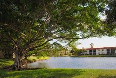 Lake in Weston Fort Lauderdale. Florida USA Stock Image