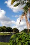 Lake in Weston Fort Lauderdale. Florida USA Stock Photo