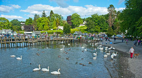 Lake Windermere: National Park Royalty Free Stock Photography