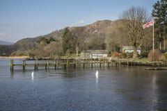 Lake Windermere near Waterhead Pier, Ambleside, Lake District, Cumbria, England. Swans feeding near wooden pier at Lake Windermere near Waterhead Pier Stock Photos