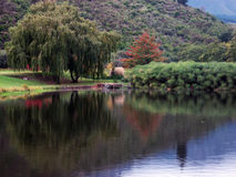Lake in the Winelands. A lake in the middle of the south african Winelands Royalty Free Stock Photography