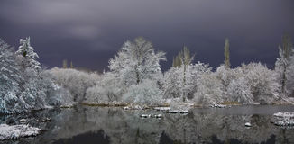 Lake in winter. Night photo of the lake in winter royalty free stock photo