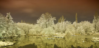 Lake in winter. Night photo of the lake in winter Stock Photography