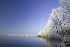 Lake in winter stock image