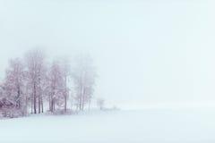 Lake at winter. Lake at foggy winter day Royalty Free Stock Photo