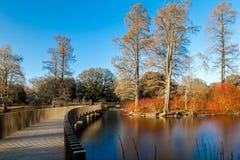 Lake in winter in Kew Gardens, London. UK Stock Images