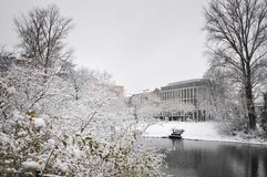 Lake in winter Park in Dusseldorf Royalty Free Stock Photos