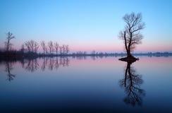Free Lake With Tree At Sunrise, Slovakia Stock Images - 49865084