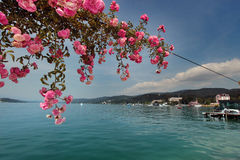 Lake Woerthersee during summertime Royalty Free Stock Photo