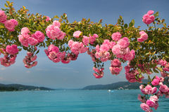 Lake Woerthersee during summertime Stock Photos