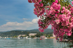 Lake Woerthersee during summertime Royalty Free Stock Photos