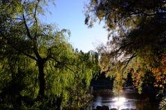 Lake of wonders 2 royalty free stock images