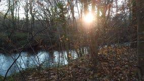lake wood jesieni odbicia Zdjęcia Royalty Free
