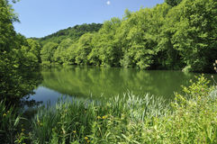 The Lake at Woodchester Park Stock Photo