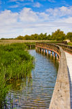 Lake and Wooden bridge Royalty Free Stock Image