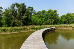 Lake with wooden path Royalty Free Stock Image