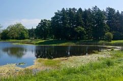 Lake and Woodlands at Arboretum Royalty Free Stock Image