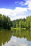 Lake in the woods. Beautiful lake in the forest with blue cloudy sky Royalty Free Stock Image