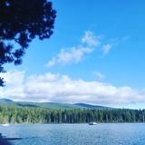 LAKE of THE woods royalty free stock photos