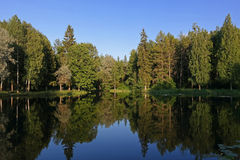 Lake of the Woods. Quiet summer evening Stock Photo
