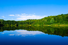 Lake of the Woods. Summer landscape Lake of the Woods Royalty Free Stock Photos
