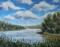 Lake of the Woods, trees, clouds, oil painting royalty free stock photos