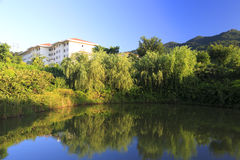Lake of xiamen administration institute Stock Photos