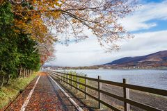 Lake Yamanaka in the autumn season of Japan royalty free stock image
