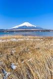 Lake Yamanaka in sunny day with Mt. Fuji, Yamanashi, Japan. Lake Yamanaka in sunny day with Mt. Fuji, Yamanashi, in Japan Royalty Free Stock Photo