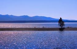 Lake Yellowstone Stock Photography