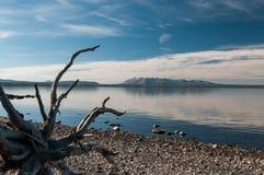 lake yellowstone Arkivbild
